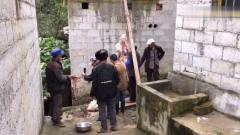 祥仔美食播报:云南高山农村杀年猪,方法原始
