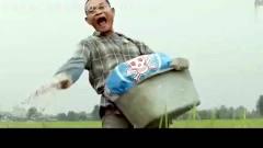 泰国创意广告系列,火了,看看这化肥广告,排