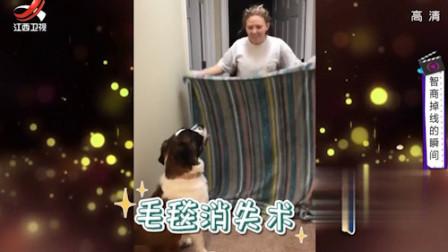 家庭幽默录像:智商掉线的瞬间 笑死我了!