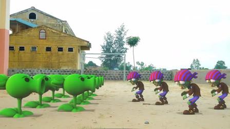 植物大战僵尸搞笑动画:小僵尸被豌豆打败了