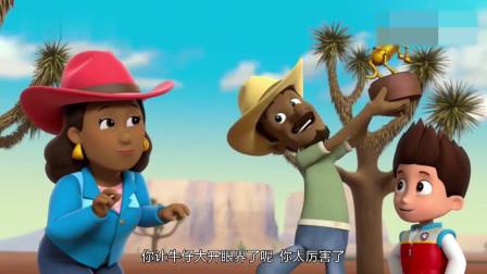 搞笑动画:阿奇咬住裤子不让谷薇掉下悬崖,天