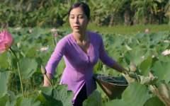 越南美食博主,是不是有点像李子柒的风格?