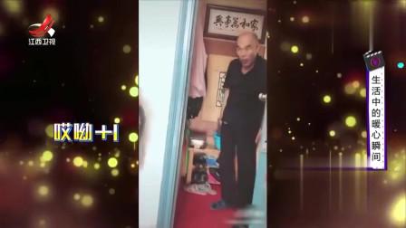 家庭幽默录像:稳重严肃的长辈,遇到外孙秒变