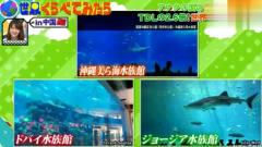 日本综艺节目:介绍中国的各种世界第一,嘉宾