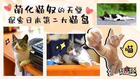 萌化猫奴的天堂 和我们一起探索日本第二大猫岛