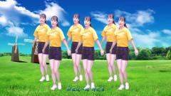 网络热门DJ版广场舞《野花香》时尚动感,健身更