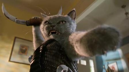 小猫表面温柔可爱,实际上是一个特工杀手,一