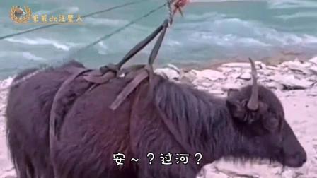 搞笑视频:叫你平时少吹牛,这下上天了吧