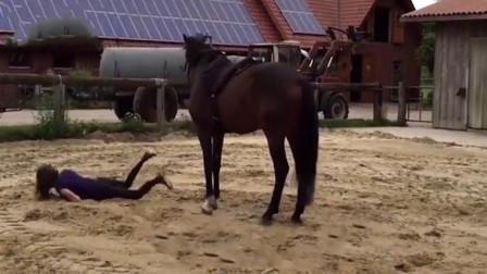 爆笑:美女骑马耍酷翻车现场,真疼啊……