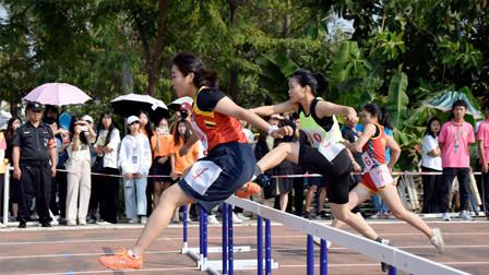 校园运动会女子跨栏比赛,王者与青铜的差距一