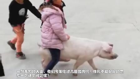 搞笑短片:狗狗在家里憋了好久,出门刚看到美