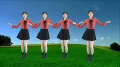气质美女广场舞《动感自由舞》最新流行舞曲,