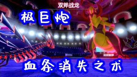 【精灵宝可梦 盾】Z小驴