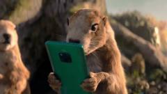 华为最新创意广告:土拨鼠的逃生新技巧