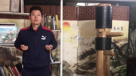 咏春拳 小念头 第四节教学演示