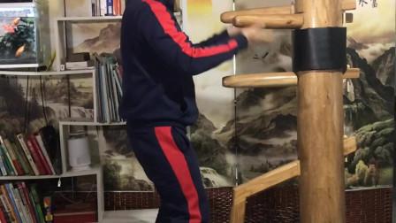 咏春拳木人桩第四节教学演示