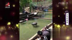 家庭幽默录像:这是一群爱湖水爱的深沉的人们