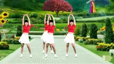 气质美女广场《情火》网络热门情歌,优美的舞蹈!