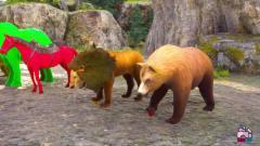 动物故事:大象狮子和熊吃猴子的水果 !儿童搞