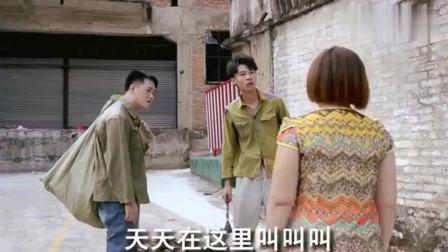 广西老表搞笑视频:许华升带老表去捡垃圾发生的趣事