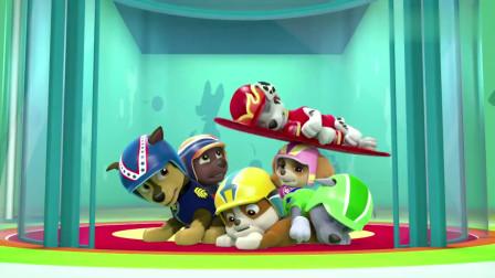 汪汪队:狗狗要集合了,毛毛带着滑板上电梯,真不愧是搞笑担当