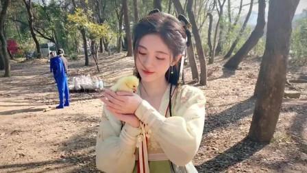 四千年美女鞠婧祎,荧幕后的小可爱