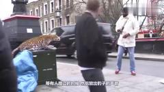 街头恶搞:小伙街头假扮盲人,专吓美女!