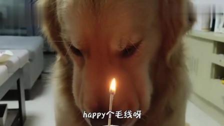 搞笑视频:知道的是过生日 不知道的还以为上供