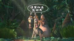 搞笑云南方言:动物版荒野求生危机四伏,生存