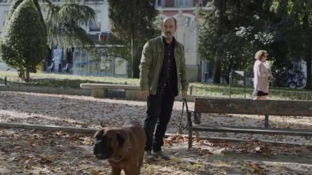 特鲁曼:遛狗还能遇见美女,原来是美女想对狗主人问好,不是他
