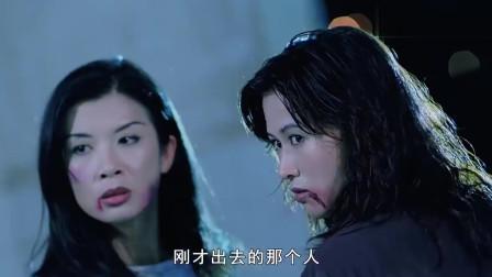 乌鸦太嚣张,两美女为了报仇不怕坐牢,直接在