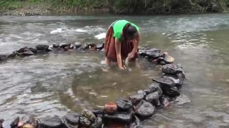 钓鱼:美女布置陷阱抓鱼,结果抓到了一条很肥