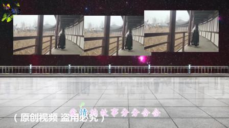 2020迎新广场舞《红尘情歌》,美女舞姿优美迷人