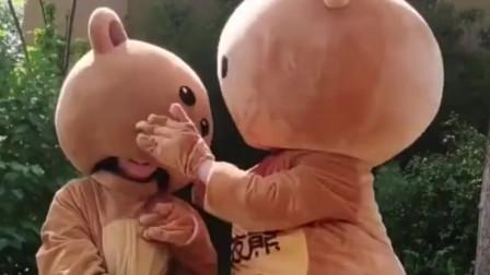 2只网红熊的日常糗事,同是九年义务教育,就属