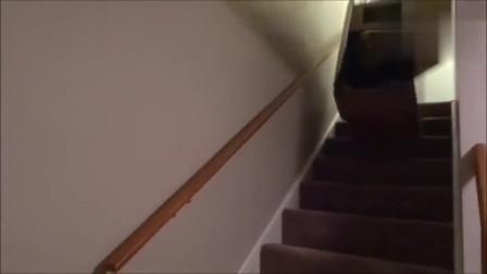宝宝坐在纸箱里从楼梯上滑下来,熊孩子失误搞