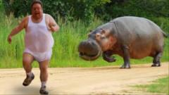 各种动物生气追人的瞬间,太搞笑了。