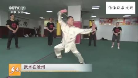 63岁王志海示范劈挂拳,这样的功夫招式很实用,