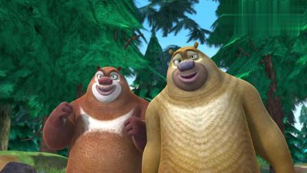 熊出没:熊大熊二恶搞光头强,结果搞完就跑把