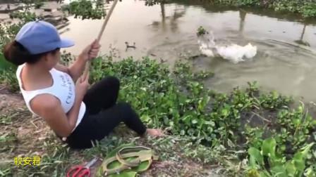 越南美女用蛇肉搞野钓鱼,没想到大鱼这么爱吃