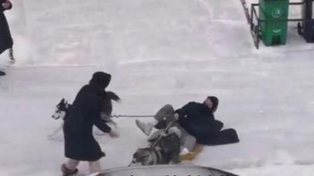 搞笑视频:下这么大雪非要遛狗 这下被狗遛了吧