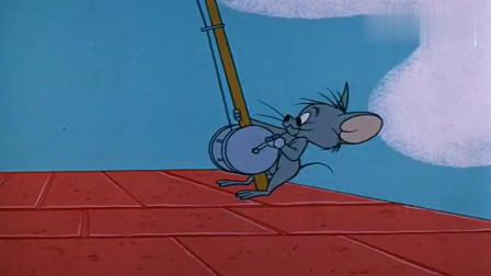 两只老鼠合伙恶搞猫咪,猫咪上当了,他还以为是自己打了自己