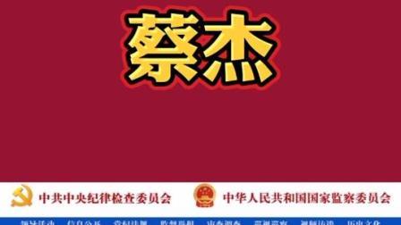 中央纪委国家监委 武汉市委原常委 秘书长蔡杰被开除党籍和公职 抗击疫情 中纪委 蔡杰被开除党籍和公职