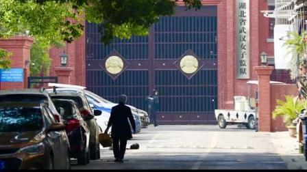 湖北省纪委监委对 刑满释放人员黄某英违规离汉抵京问题 相关责任人立案审查调查