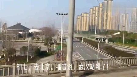 武汉封城第八天是什么情况