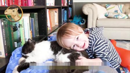 """搞笑视频:二哈也能带孩子,围上围脖,花式"""""""
