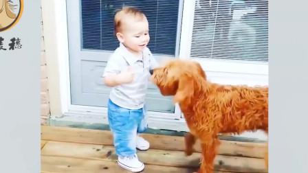 """搞笑视频:宝宝不会爬,狗狗当""""老师"""",这动"""