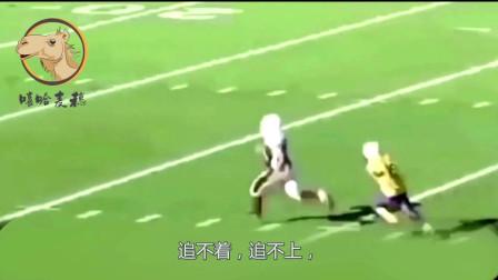搞笑视频:手球比赛时,上演搞笑一幕,原因让
