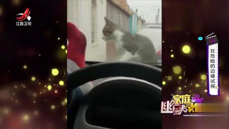家庭幽默录像:小伙模仿赵四,这迷幻的步伐连