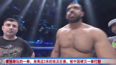 震撼拳坛的一拳,身高近2米的埃及巨兽,被中国硬汉一拳打翻