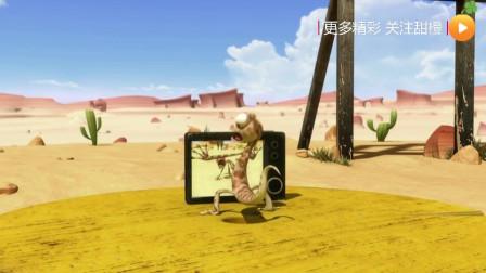 「幽默搞笑」「沙漠里的小伙伴系列」013一起来